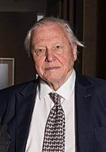 Picture of an author: David Attenborough