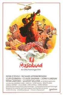 Picture of a movie: Rosebud
