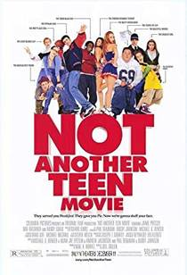 Picture of a movie: Not Another Teen Movie