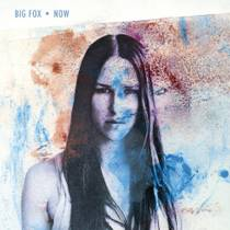 Picture of a band or musician: Big Fox