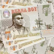 Picture of a band or musician: Burna Boy