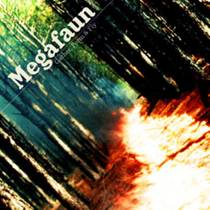 Picture of a band or musician: Megafaun