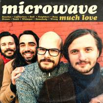 Picture of a band or musician: Microwave