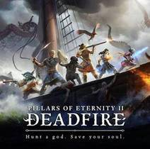 Picture of a game: Pillars Of Eternity II: Deadfire