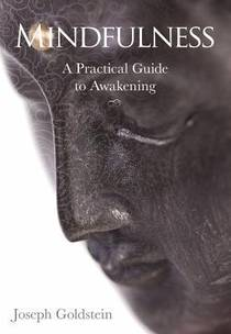 Picture of a book: Mindfulness: A Practical Guide To Awakening