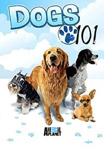 Picture of a TV show: Dogs 101
