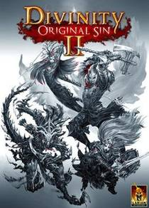 Picture of a game: Divinity: Original Sin II