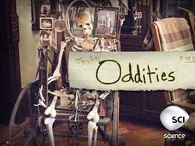 Picture of a TV show: Oddities