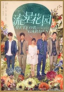 Picture of a TV show: Meteor Garden