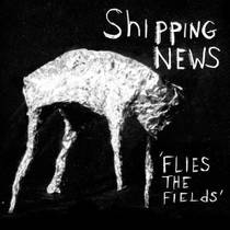 Picture of a band or musician: Shipping News
