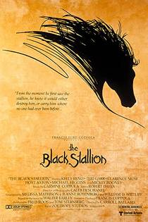 Picture of a movie: The Black Stallion