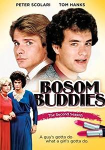 Picture of a TV show: Bosom Buddies