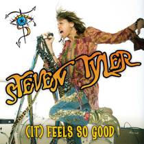 Picture of a band or musician: Steven Tyler
