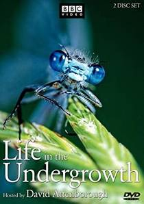 Picture of a TV show: Life In The Undergrowth