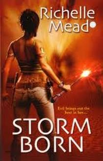 Picture of a book: Storm Born