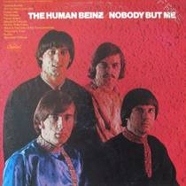 Picture of a band or musician: The Human Beinz