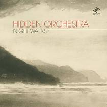 Picture of a band or musician: Hidden Orchestra