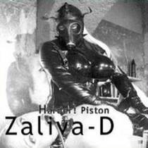 Picture of a band or musician: Zaliva-D