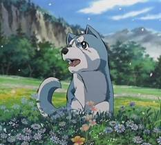 Picture of a TV show: Ginga Densetsu Weed