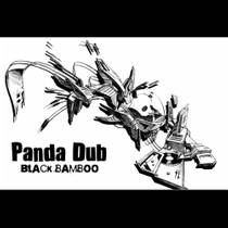 Picture of a band or musician: Panda Dub