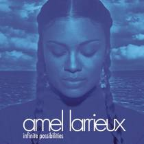 Picture of a band or musician: Amel Larrieux