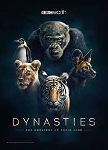 Picture of a TV show: Dynasties