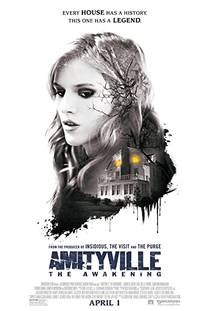 Picture of a movie: Amityville: The Awakening