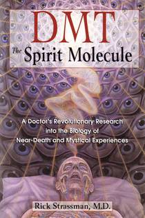 Picture of a book: Dmt: The Spirit Molecule