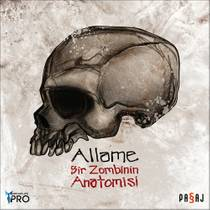 Picture of a band or musician: Allame