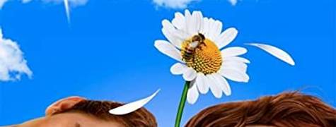 Image of Pushing Daisies