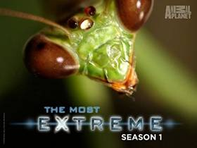 Picture of a TV show: The Most Extreme