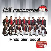 Picture of a band or musician: Banda Los Recoditos