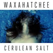Picture of a band or musician: Waxahatchee