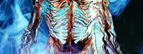 Image of Body Melt