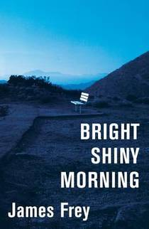 Picture of a book: Bright Shiny Morning