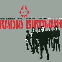 Picture of a band or musician: Radio Birdman