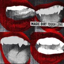 Picture of a band or musician: Magic Dirt