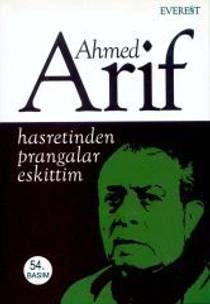 Picture of a book: Hasretinden Prangalar Eskittim
