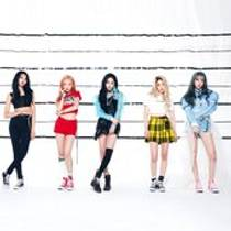 Picture of a band or musician: PRISTIN V