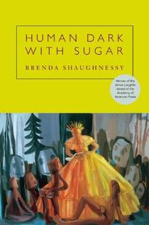 Picture of a book: Human Dark with Sugar