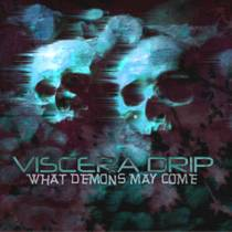 Picture of a band or musician: Viscera Drip
