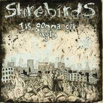 Picture of a band or musician: Shorebirds