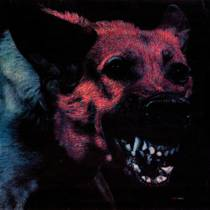 Picture of a band or musician: Protomartyr