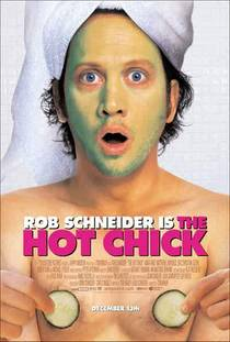 Picture of a movie: The Hot Chick