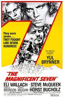 Picture of a movie: The Magnificent Seven