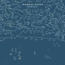 Picture of a band or musician: Mammal Hands