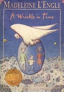 Picture of a book: A Wrinkle In Time