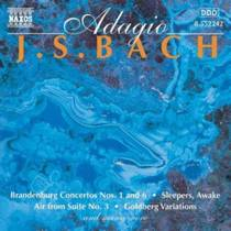 Picture of a band or musician: Johann Sebastian Bach