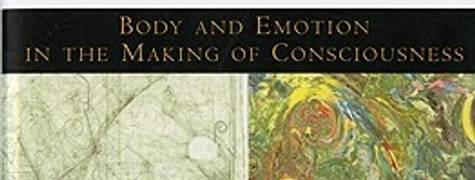 Image of The Feeling Of What Happens: Body And Emotion In The Making Of Consciousness