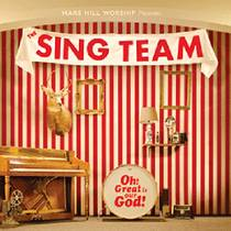 Picture of a band or musician: The Sing Team